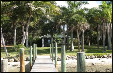 Dock with palmtrees in background